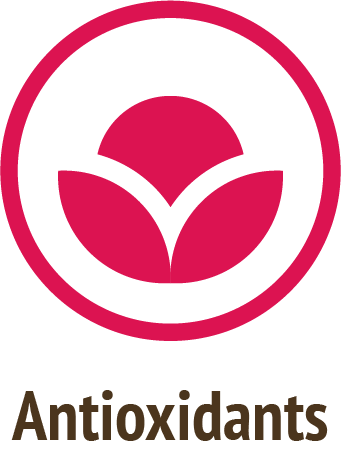 antioxidants pink icon do only good pet food