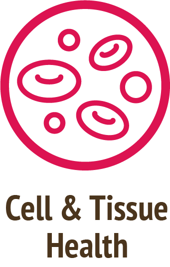 cell tissue health pink icon do only good pet food