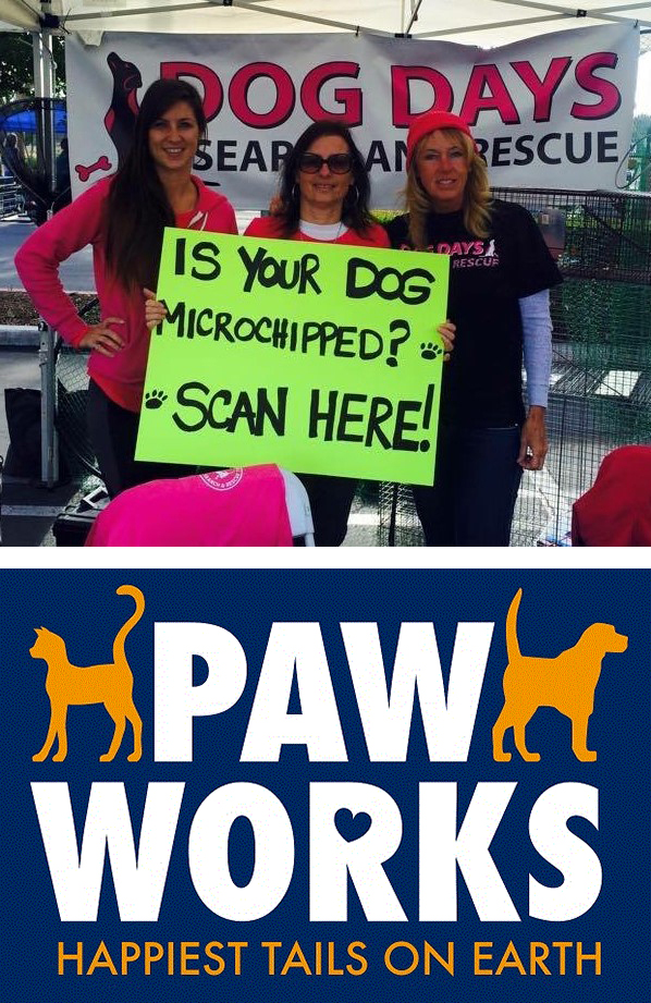 lifestyle dog days search rescue paw works local organizations