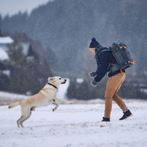 lifestyle health benefits people pets dogs