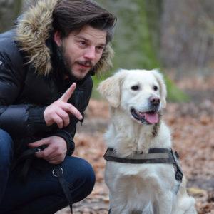 lifestyle training your dog