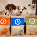 nutrition health benefits rotational feeding do only good pet food dogs
