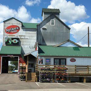 retailer spikes feed pet supply elk river minnesota